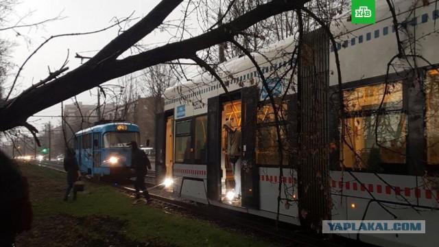 В Москве из-за шторма пострадали 12 человек