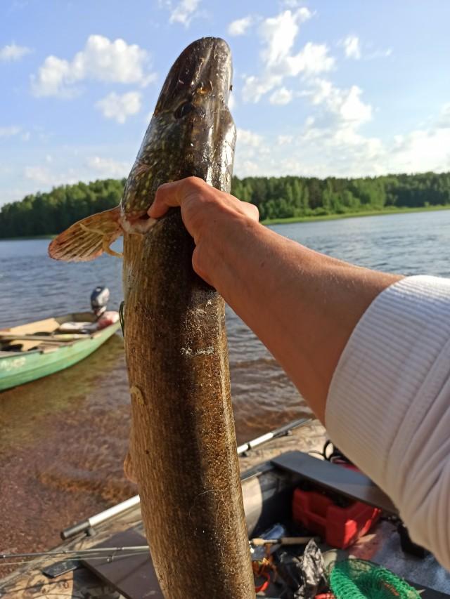 Пацаны, хочу похвастаться рыбалкой