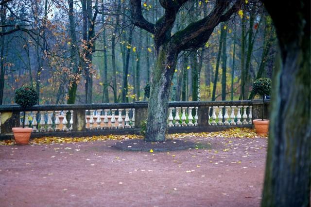 Императорская Гатчина. Прогулка по парку