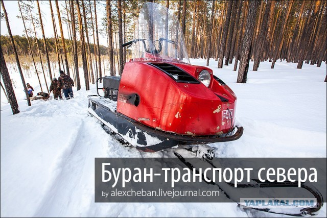Буран- транспорт севера