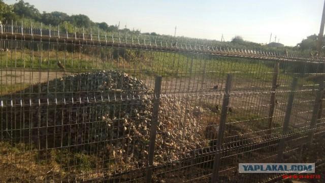 Забор габион-пергон
