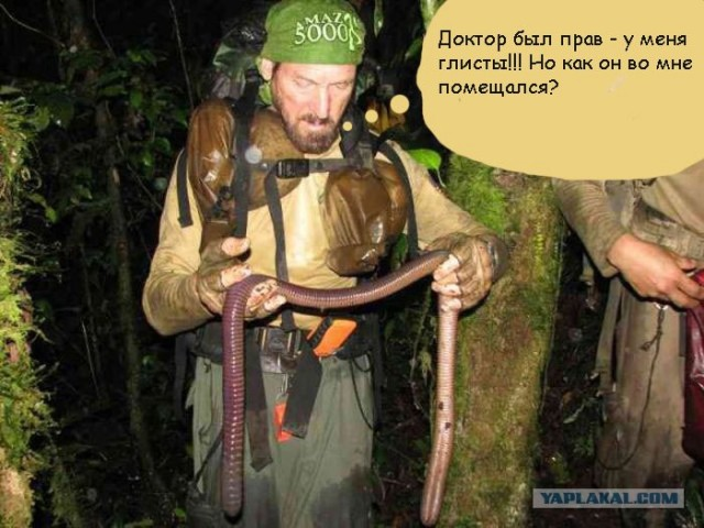фото червей на рыбалку