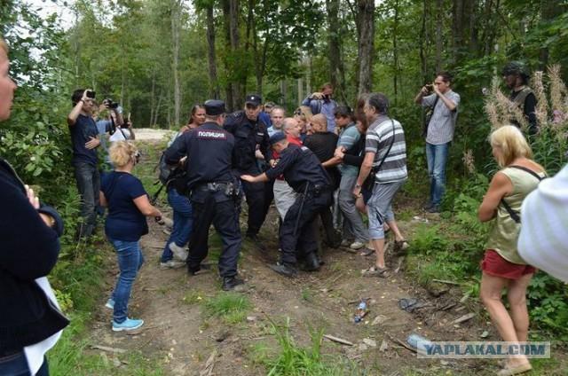 Невидимые для чиновников заборы, или как жители Токсово освобождали берег озера