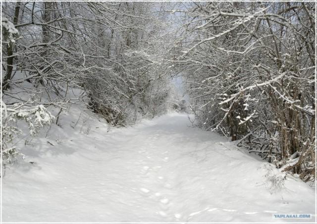 Крым. Терновка. Зимние дороги.