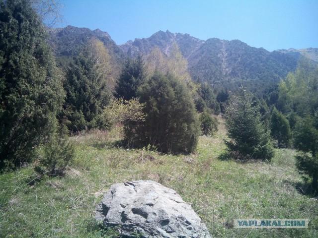 9 мая 2018. Ала-Арчинское ущелье. Кыргызстан