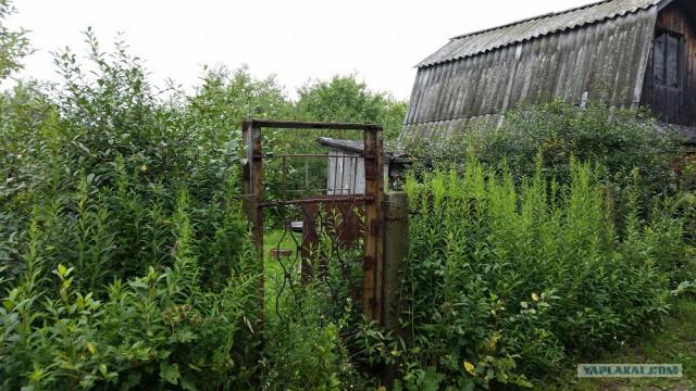 Каркасный садовый домик