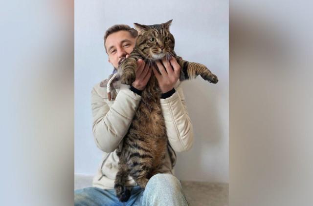 """Хозяин толстого кота обратился к """"Аэрофлоту"""" и предложил добрый финал истории"""