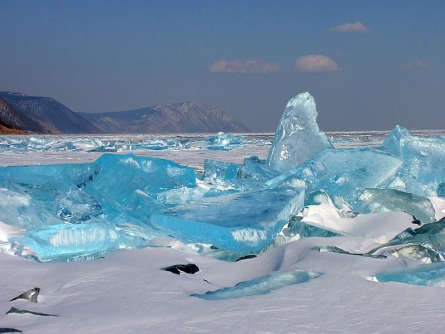 Уникальные животные озера Байкал