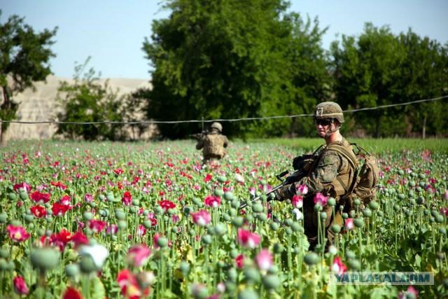 Неизвестные вертолеты перебрасывают боевиков на границу Таджикистана