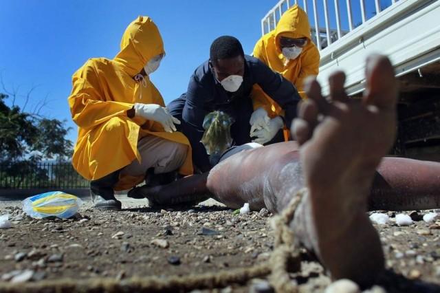 Эпидемия холеры на Гаити! (Жесть!)