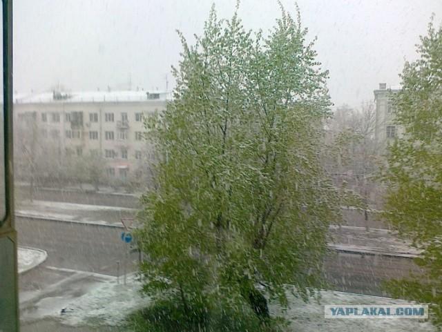 Утро в Барнауле 11-го мая