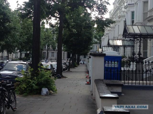 Украина в Лондоне и еще 100 фотографий из Англии