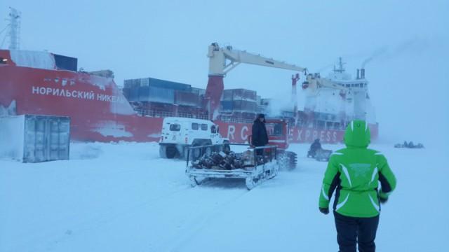 Арктика моими глазами