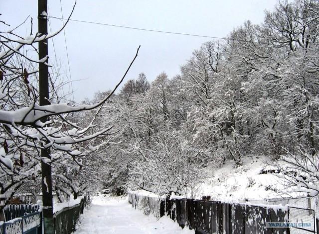 А у вас зима в этом году тоже настоящая?