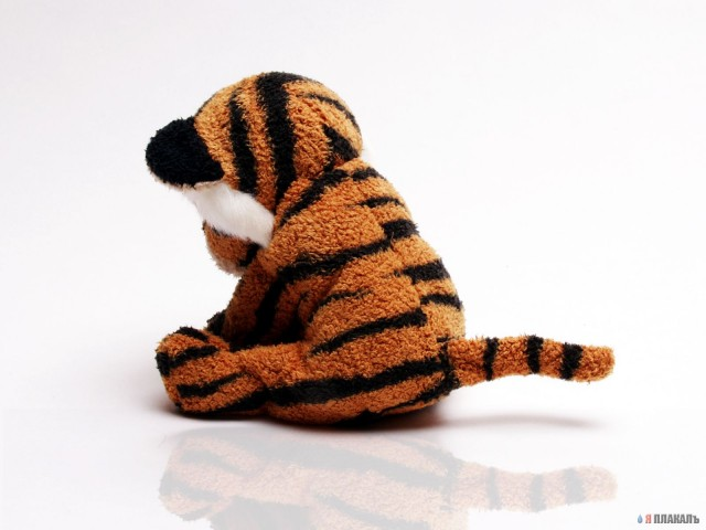 Фотожаба одинокий тигра
