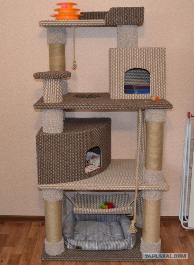 Как сэкономить 2/3 от стоимости котячьего комплекса, или как мы делали дом для нашей сфинксы..