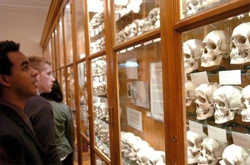 заявку музей медицинской истории мюттера филадельфия магазинах
