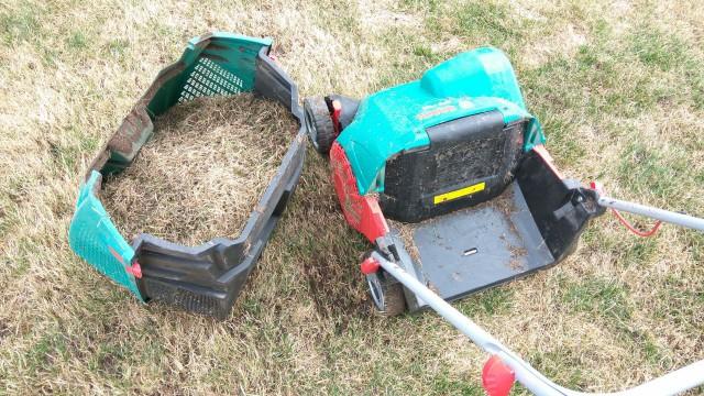 Немного о газоне: о его устройстве и весеннем уходе