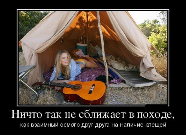 http://s00.yaplakal.com/pics/pics_preview/4/9/0/8807094.jpg