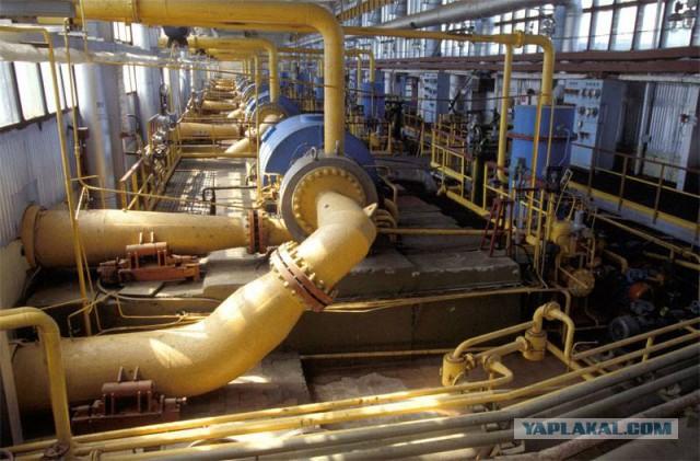 Минэкономразвития Украины призналось: газ из Европы дороже газа из России