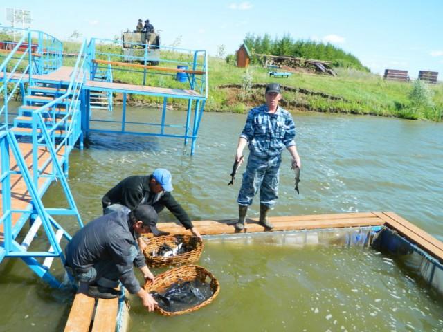 рыбалка в районе чебоксары