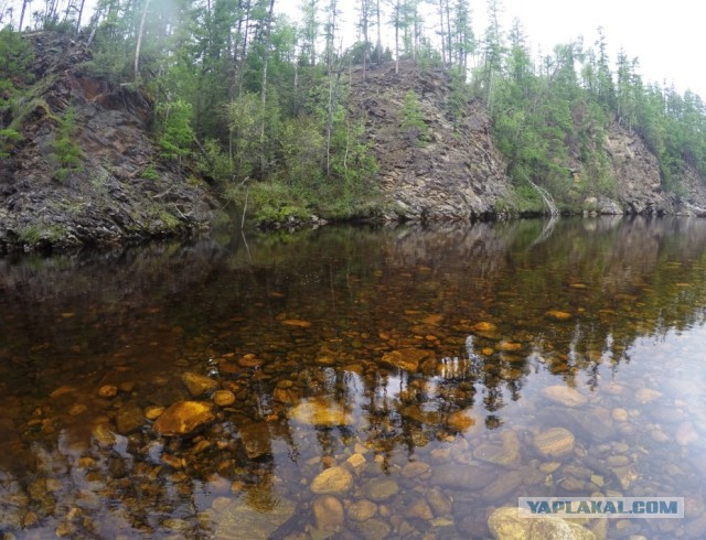 река кия хабаровский край рыбалка