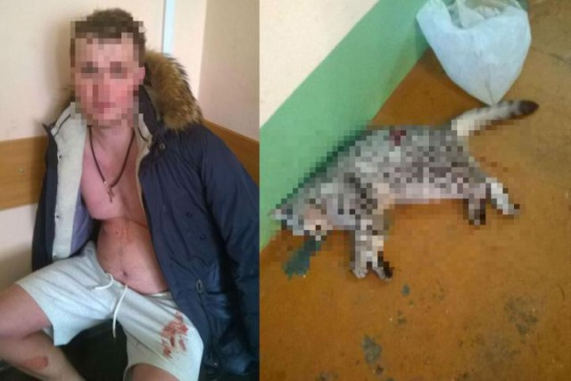 В Омске бывший детский тренер по хоккею зарезал мать, бабушку и кота