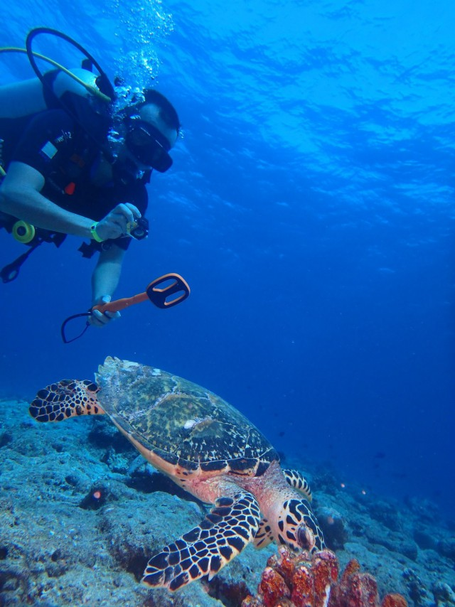 Мальдивы - бюджетный отдых и успешный поиск золота с металлоискателем!