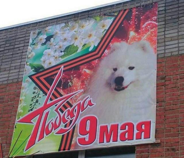 Собака — друг человека, а чиновники нет. И пусть только попробуют снять плакат!
