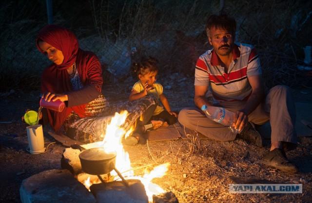 Райская Греция стала адом для мигрантов