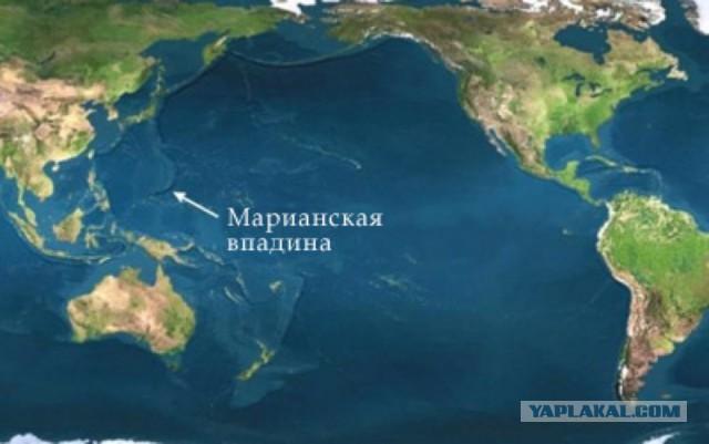 10 самых странных обитателей Марианской впадины