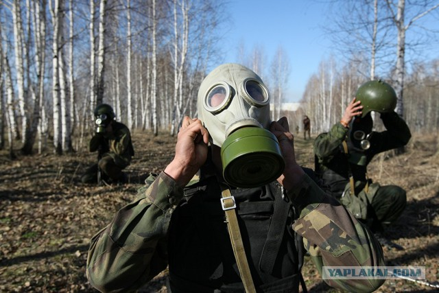 Путин поручил восполнить запасы средств защиты