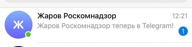 Глава Роскомнадзора Жаров завел Telegram