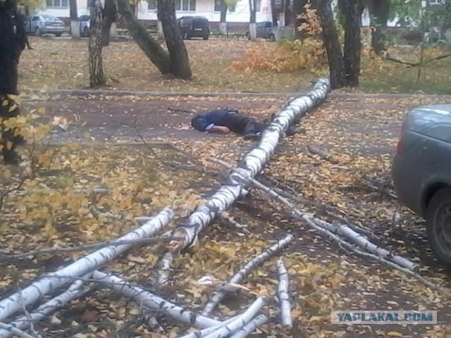 В Нижнекамске дерево убило мужчину.