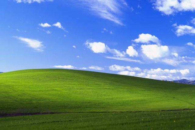 100 тысяч долларов против 45 долларов: разница в гонорарах авторов обоев Windows XP