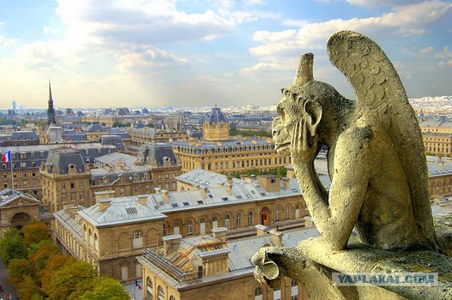 Сбербанк готов выделить финансовую помощь на реставрацию Собора Парижской Богоматери,