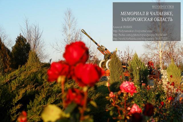 Мы помним и гордимся Вами.