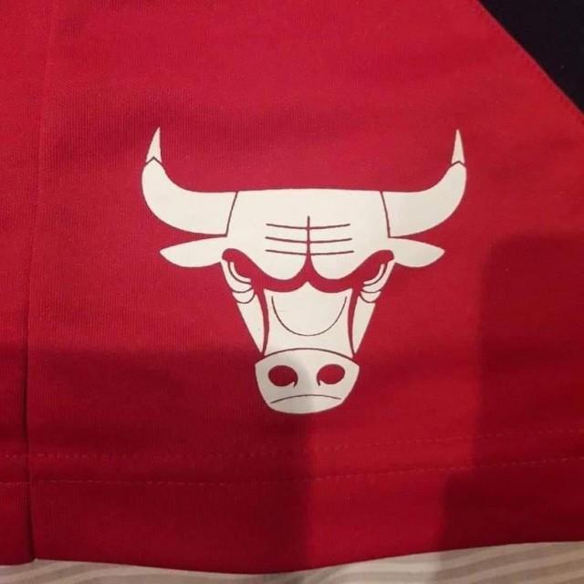 А вы никогда не пробовали перевернуть эмблему Chicago Bulls и внимательно посмотреть?
