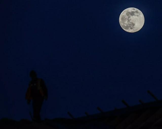 Россия приступила к разработке схемы первой миссии по высадке на Луну