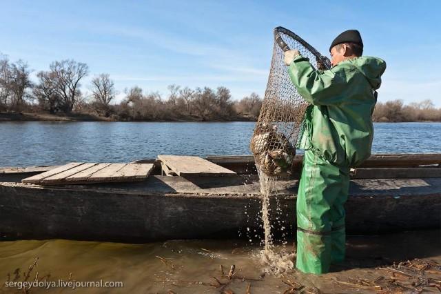 рыбная ловля бреднем
