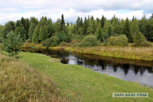 Деревянный мост за 18 млн рублей