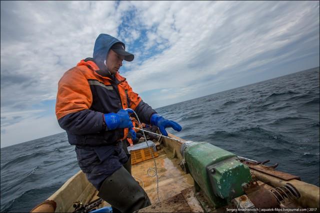 сахком симпозиум рыбная ловля  2017