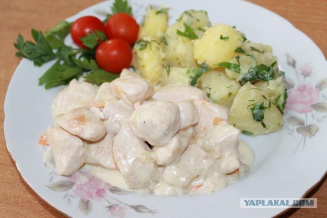 Курица с луком в сметане рецепт с пошагово в