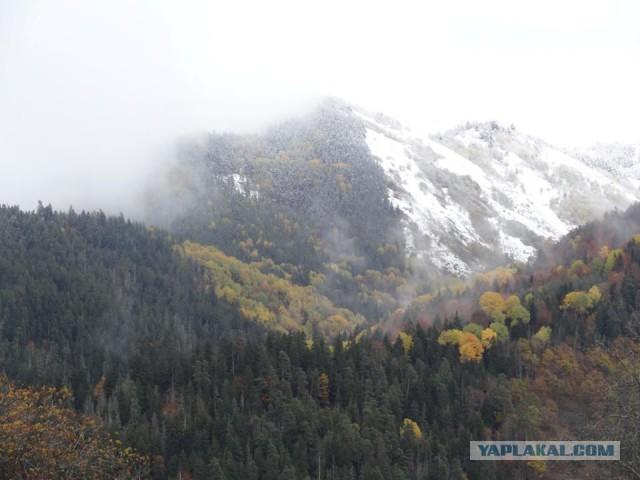 """Природа """"альпийской"""" Грузии"""