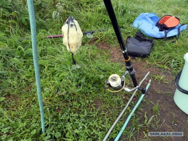 закидушка рыболова