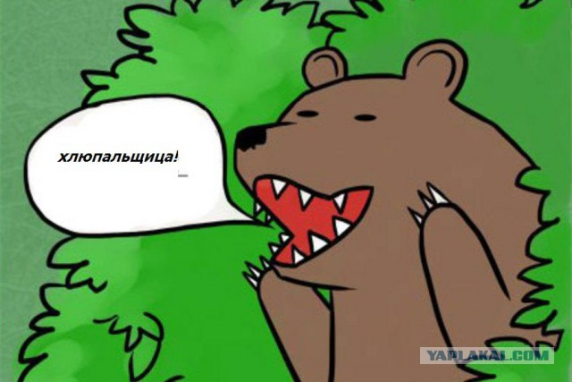 шлюха картинка медведь