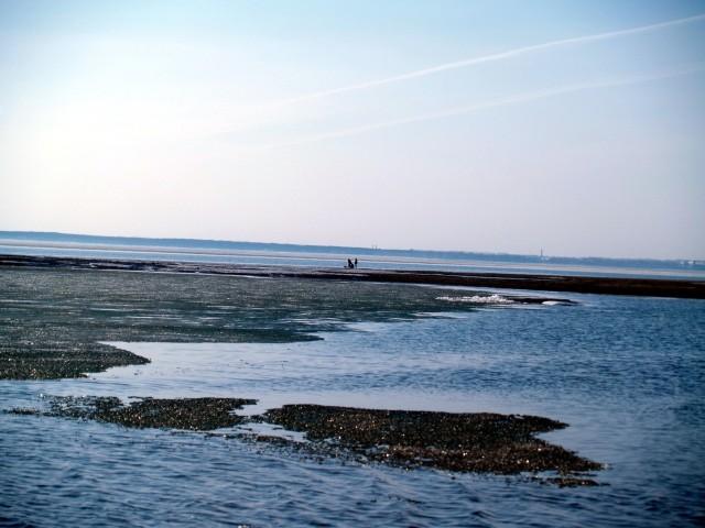 Прогулка по дну Обского водохранилища
