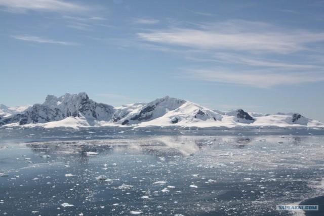 Антарктида своими глазами