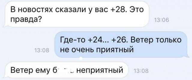 8724395.jpg