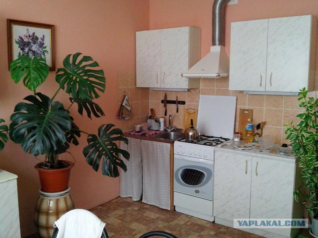 Небольшой ремонт кухни